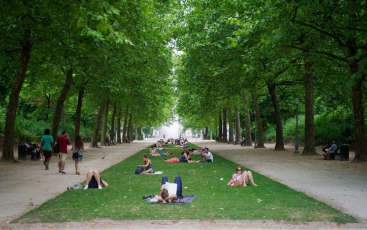 People relax in the shadow of the trees flanking an alley at the 'Parc Royal' in Brussels.  (STEPHANIE LECO/European Pressphoto Agency)